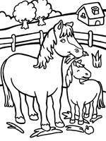 Coloriage chevaux de trait - Coloriage cheval et poulain ...