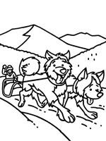 Coloriage chien sur top coloriages coloriages chien - Coloriage chien de traineau ...