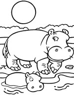 Coloriage hippopotame sur top coloriages coloriages - Coloriage hippopotame ...
