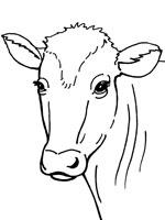 Coloriage Vache Sur Top Coloriages Coloriages Vache